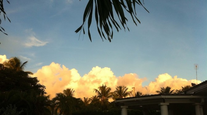 cloud of the day…